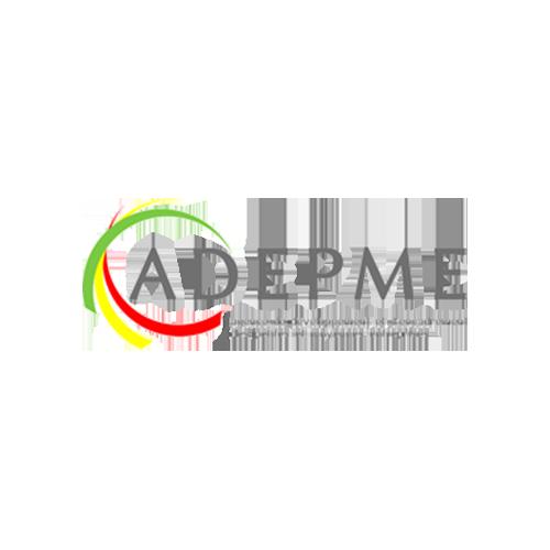Agence de Développement pour l'Entreprenariat des Petites et Moyennes Entreprises (ADEPME)